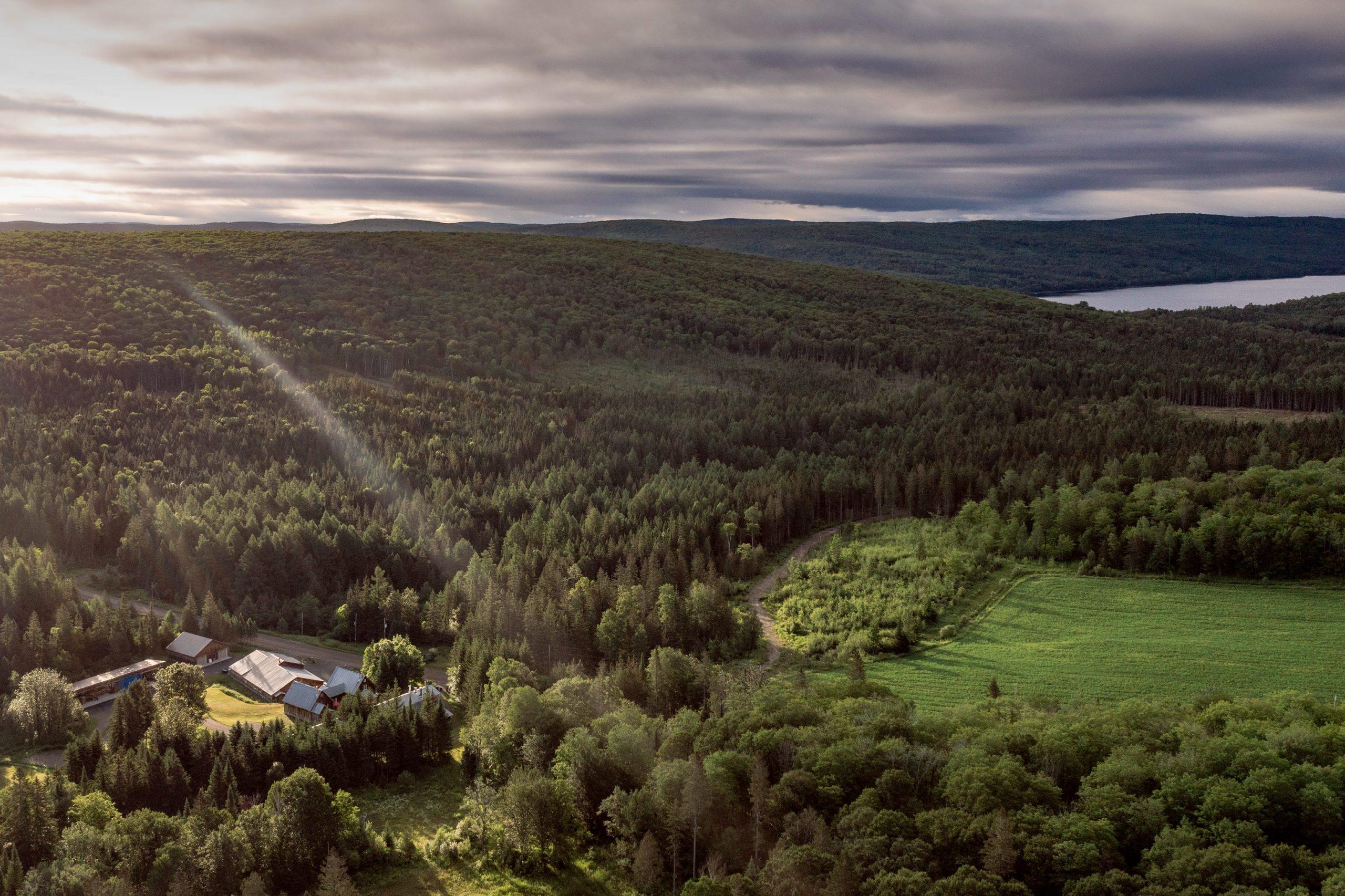 Érablière du Domaine Acer vue aérienne avec la forêt